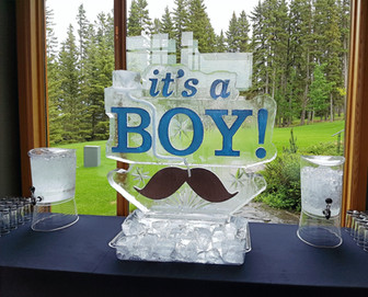 Theme ice sculpture - celebrating the birth of a baby boy.  A luge run was also incorporated into the design.