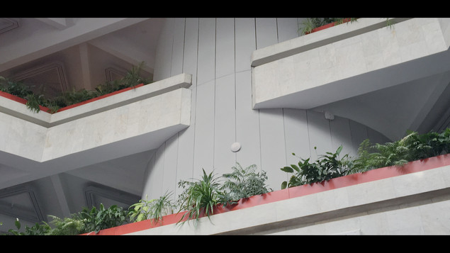 Sequence 01.00_00_01_00.Still002.jpg