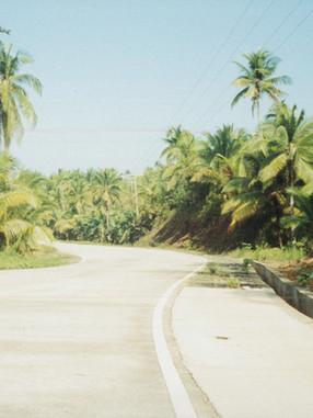 Roads- Mindanao ave.jpg