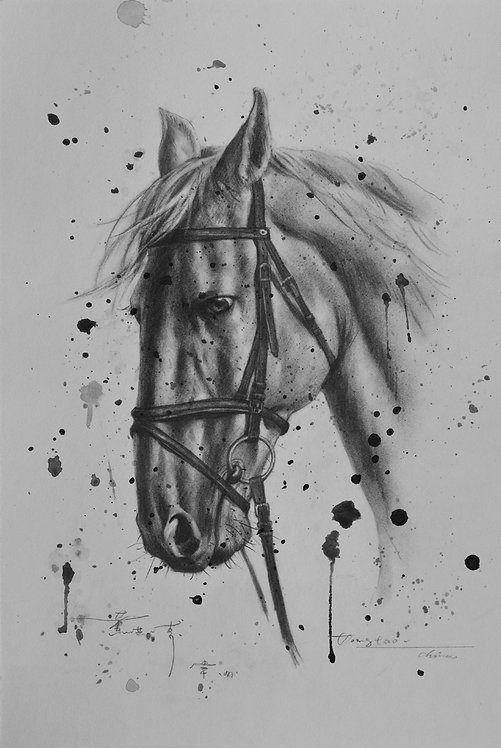 Drawing-Horse
