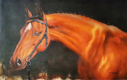 Oil painting -Horse