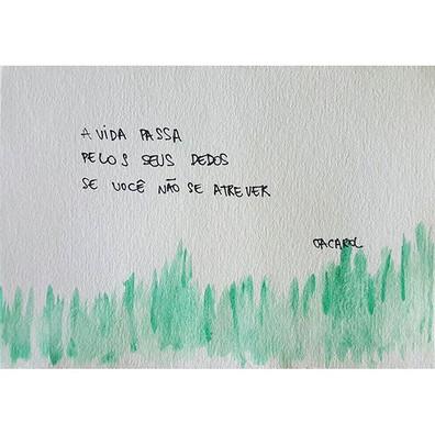 e como passa!__#jacarol #haikai #poesia