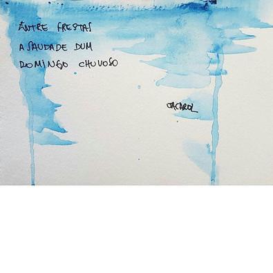 #haikai #poesia #watercolor #jacarol
