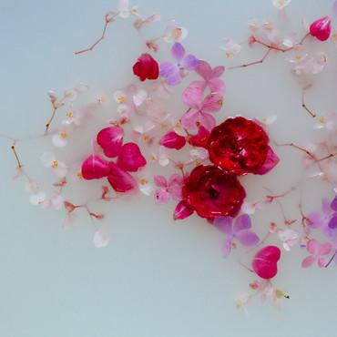 banho-de-flores-43.jpg