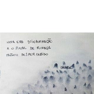 🌾 #jacarol #haikai #poesia #frases #poe