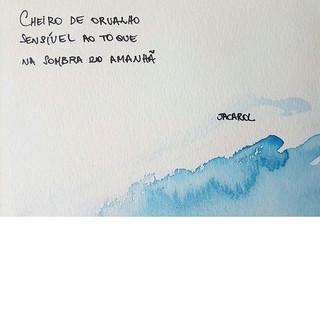 #haikai #poesia #watercolor #jacarol #in