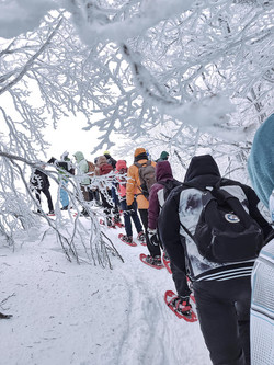 Ciaspolata di gruppo, inverno 2021. Qualche foto di una domenica fredda e irreale, la natura come di