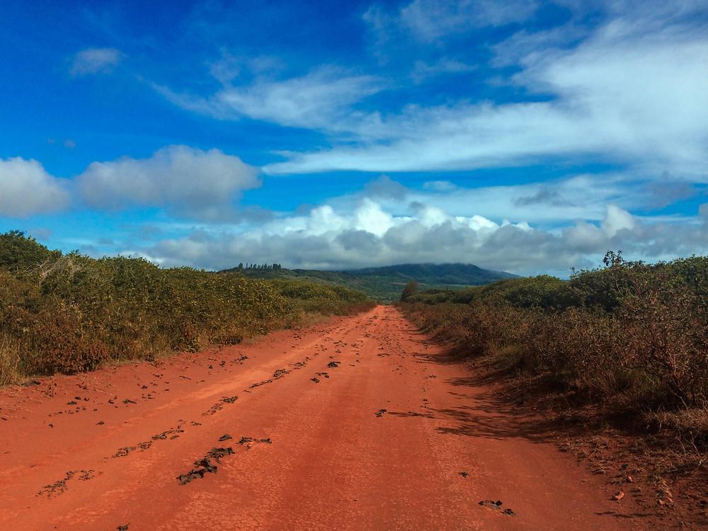 Innamorata della terra rossa che caratterizza alcune delle Isole delle Hawaii.