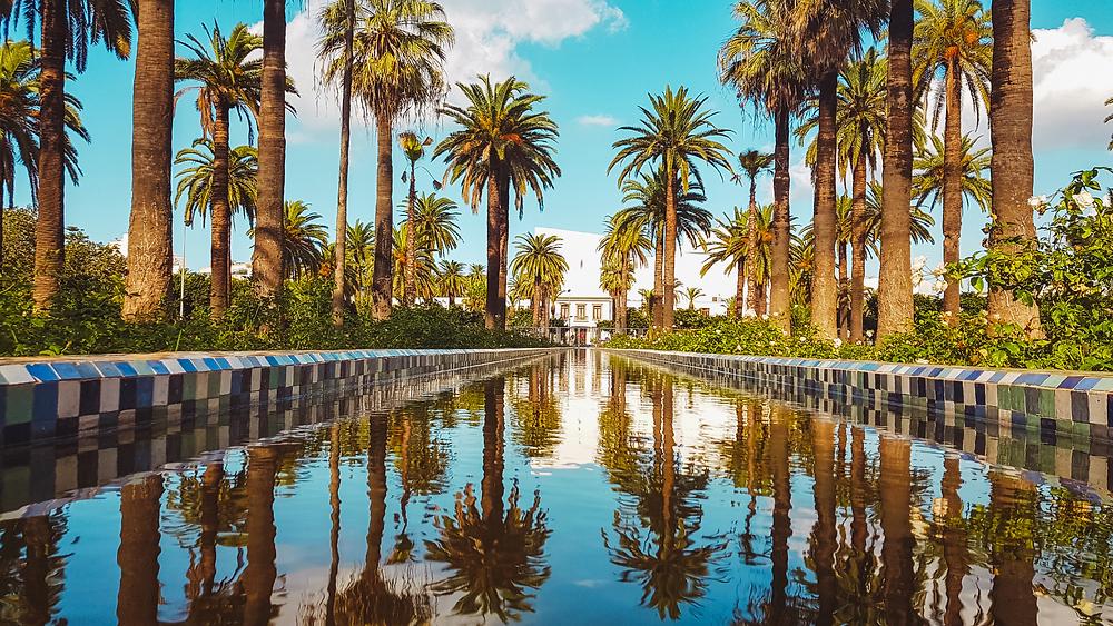 Arab League Park a Casablanca. Immagine presa dal web per farci sognare un po'.