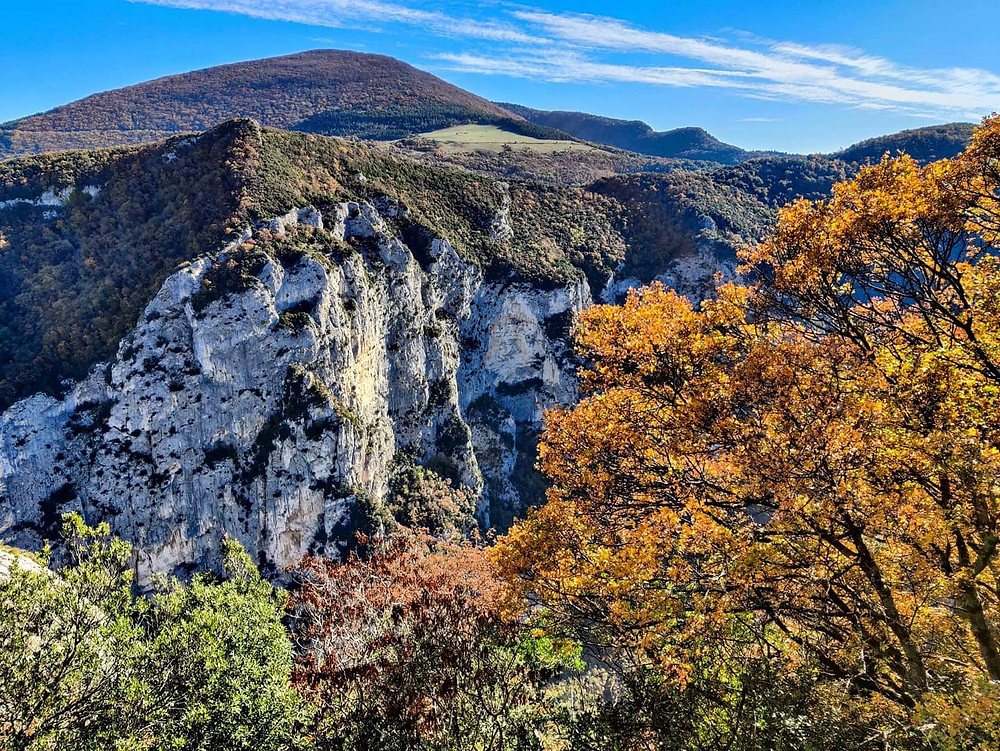 Panoramica dall'alto di uno dei view point nel tragitto sulla Gola del Furlo. L'autunno dipinge pian piano la vegetazione che si getta sui versanti.
