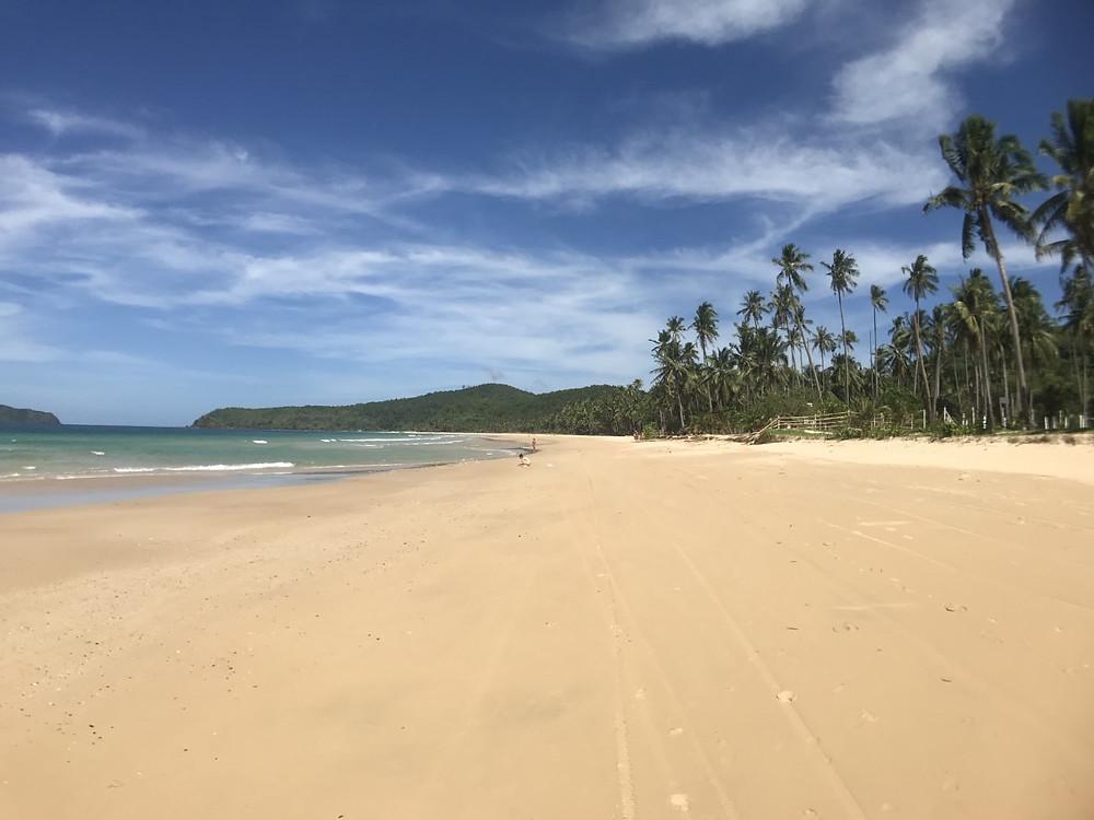 Meravigliosa vista di una spiaggia deserta a Nac Pan Beach, El Nido. Il silenzio della costa, rotto solo dal rumore del mare. Incantevole! Filippine.