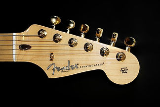 fender stratocaster decals and stickers