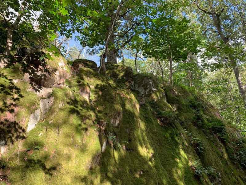 8. 800X600 1_Day_Hiking_near_Stockholm_G