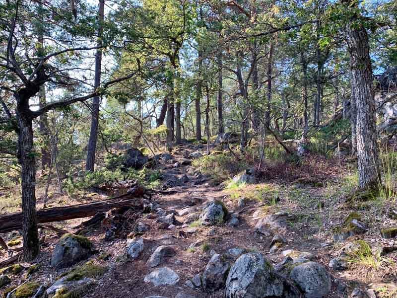 5. 800X600 1_Day_Hiking_near_Stockholm_F