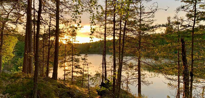 Sunset_Hike_Stockholm_3.jpg