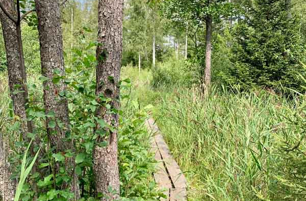 6. 800X600 1_Day_Hiking_near_Stockholm_R