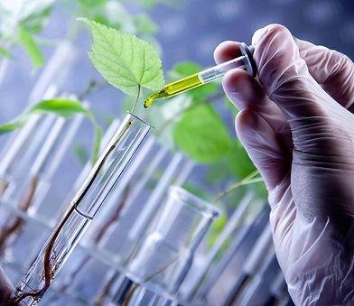 biotechnology (1).jpg