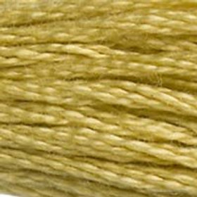 DM117-0834 STRANDED COTTON 8M SKEIN Light Brass