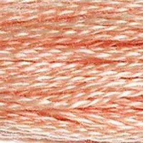 DM117-0754 STRANDED COTTON 8M SKEIN Beige Rose