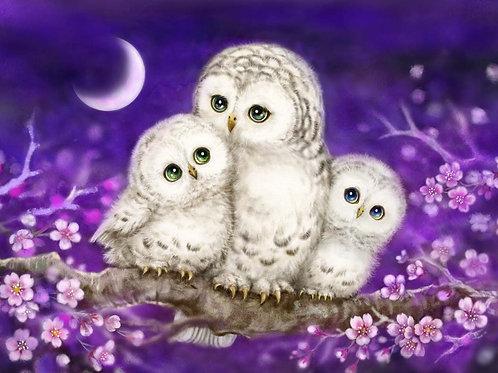 Grafitec Printed Tapestry Owl Family