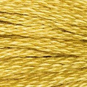 DM117-3820 STRANDED COTTON 8M SKEIN Maze Yellow