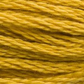 DM117-3852 STRANDED COTTON 8M SKEIN Mustard Yellow
