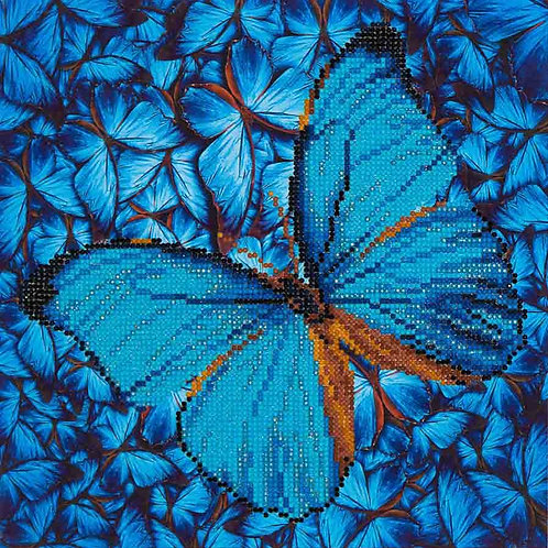 Flutter by Blue