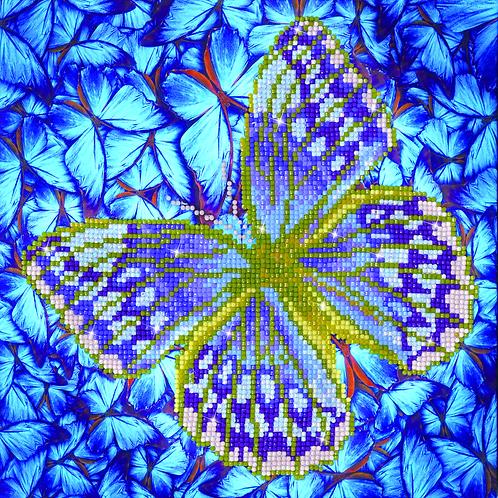 Flutter by Silver