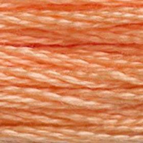 DM117-3825 STRANDED COTTON 8M SKEIN Mango Orange