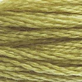 DM117-0734 STRANDED COTTON 8M SKEIN Light Olive Green