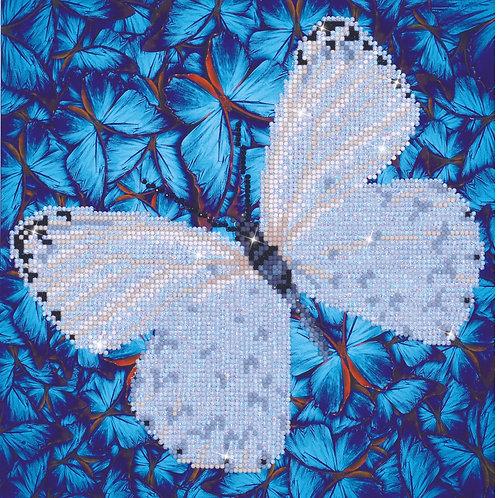 Diamond Dotz Flutter by White