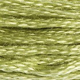 DM117-3348 STRANDED COTTON 8M SKEIN Lettuce Heart Green