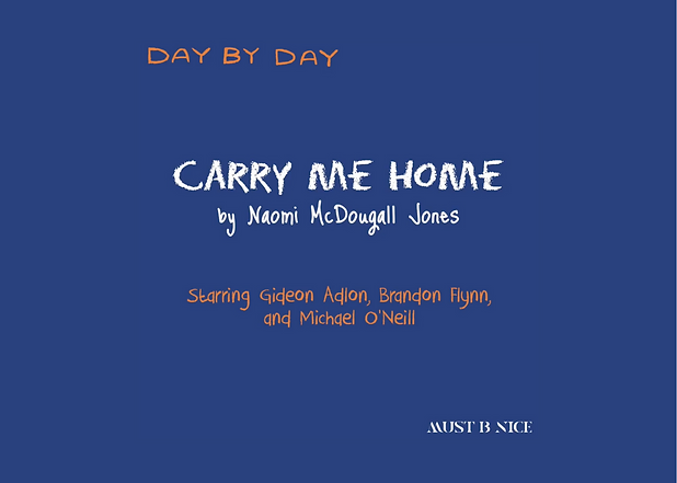 Carry Me home 2.png