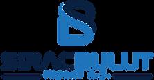 logo-dik-beyaz-zemin.png