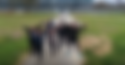 Screen Shot 2018-10-01 at 11.56.24 AM.pn