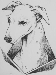 Greyhound Tattoo Design