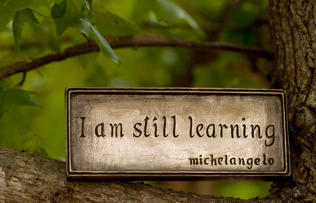 e-Reflections on M&E&L and lessons from P&I´s online course
