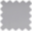 Platinum Leather PNG.png