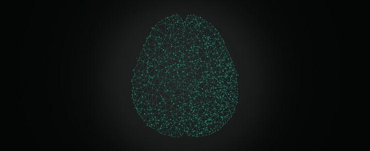 bg-neurociencia-01.jpg