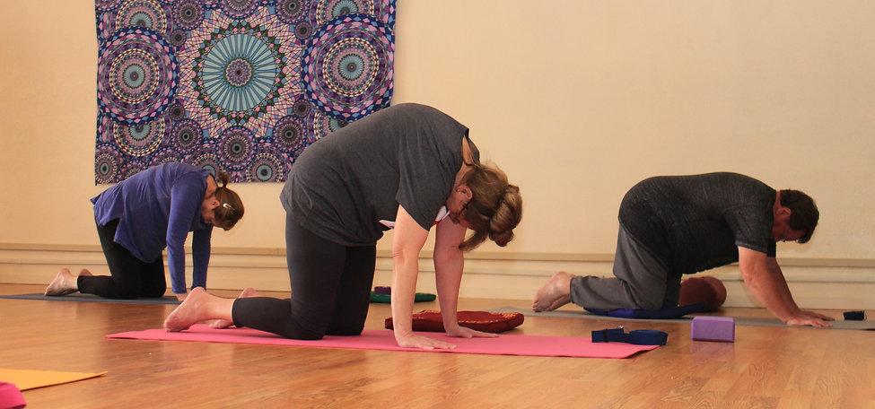 Gentle Beginner's Yoga clas serves retired seniors for increased strength, flexibilty, ad vitality in later life.