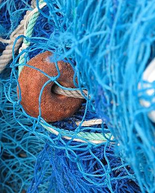 fishing-net-557249_640.jpg