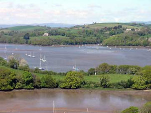 Dittisham view.jpg