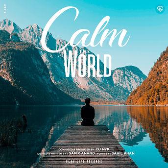 DJ NYK - Calm the World (ARTWORK) withou