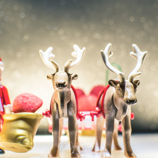 Santa Crew