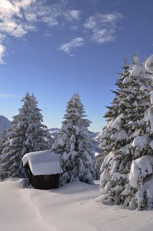 Randonnée raquette - Haute Savoie - Alpes