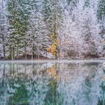 Lac vert reflection