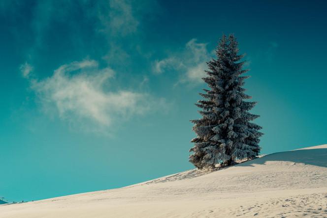 Paysage montagne hiver