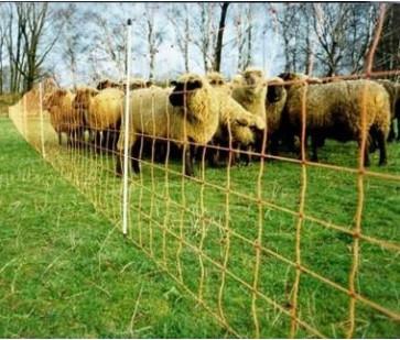 Colocando un poste de una portilla para los ovejos (con Edu..)