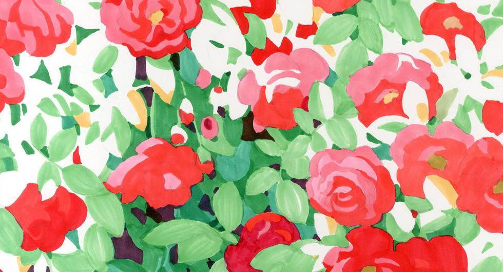 Rose_1600.jpg