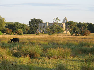 Newark Priory  David Clubley.JPG